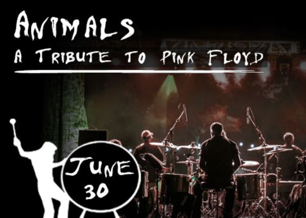 Animals a Tribute to Pink Floyd